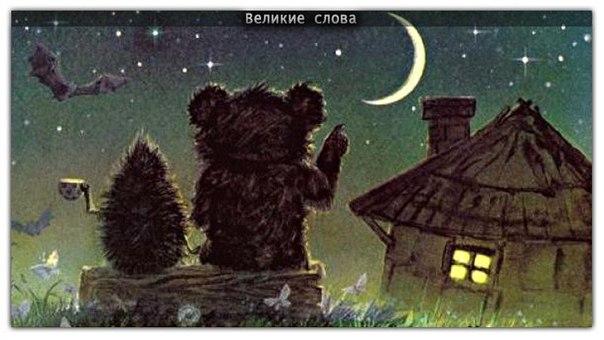 Подборка фотографий с медведями, которые были сделаны на улицах российских городов это не я написал письмо