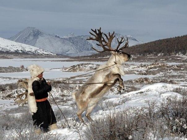 Монголия – иной мир эти уникальные